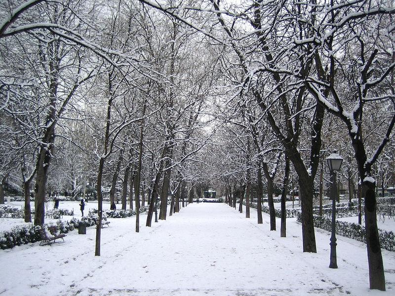 Madrid-Snow-Jan09 036