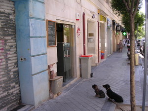 Every_day_madrid_008_2
